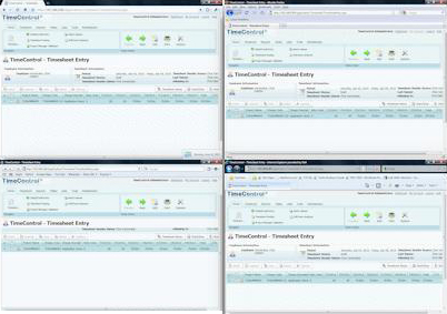 TimeControl Timesheets on Internet Explorer, FireFox, Mozilla and Safari